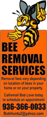 Bee Removal Services Ad